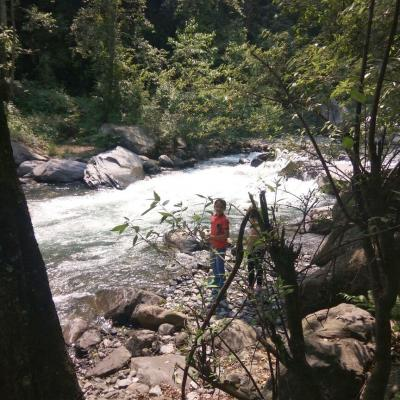 River Forest Retreat Cottage Manali